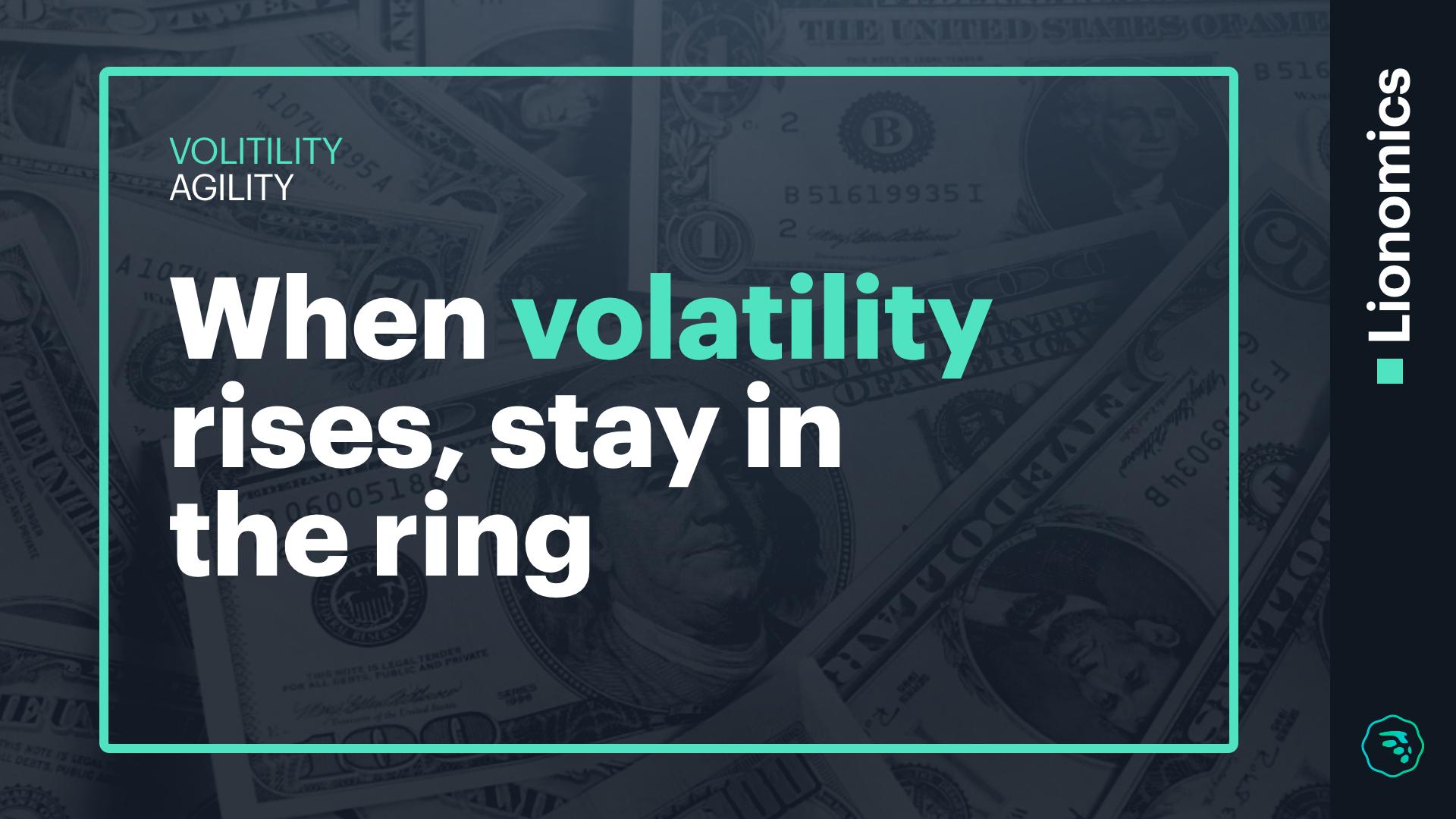 Lionomics VOLITILITY AGILITY BLOG Whats Volatility 11262018