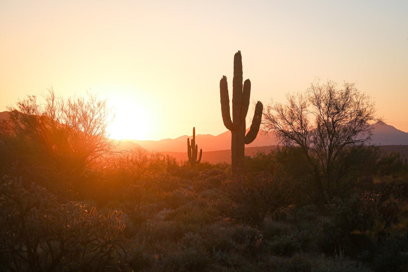 payday loans in Mesa AZ
